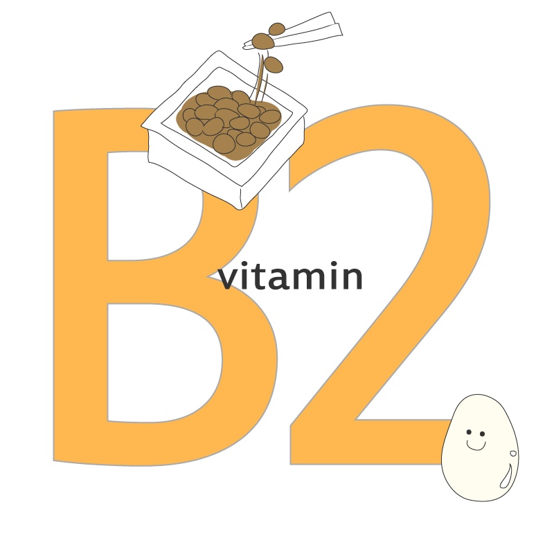 ビタミンb2